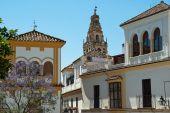 """«Les routes Sefarad"""": la voix de l'histoire juive en Espagne"""